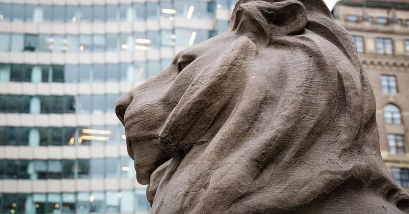 The Lion in Winter. New York Public Library, Fifth Avenue at 42nd Street.   ©  Jeffrey Zeldman/Flickr