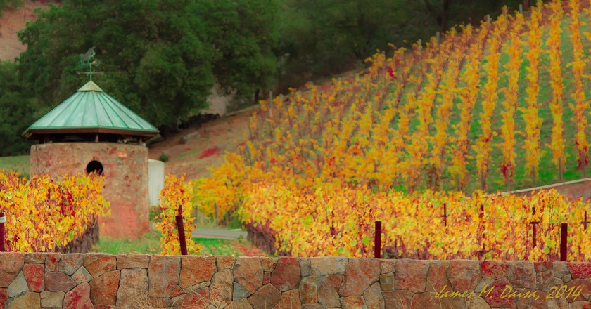 A Fall Day in the Napa Valley III Ι©James Daisa/Flickr
