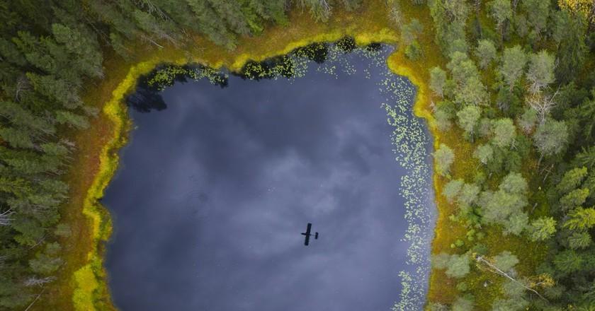 Kenozersky National Park | Courtesy of Kenozersky National Park / © Daniil Korzhonov