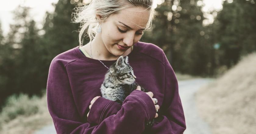 Hugging kitties is a good first step  © Japheth Mast / Unsplash