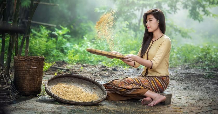 Rice Woman | © Sasint/Pixabay