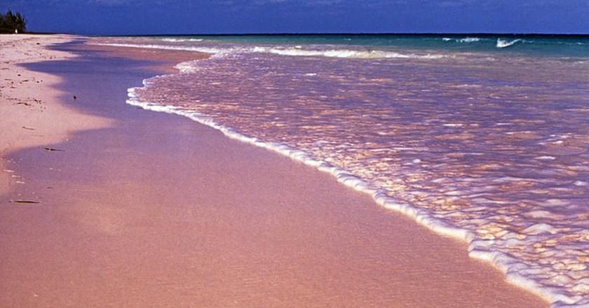 Pink Sand Beach, Harbour Island, the Bahamas   © Rüdiger Stehn/Flickr