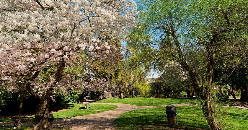 12 Reasons to Visit Seattle in the Spring