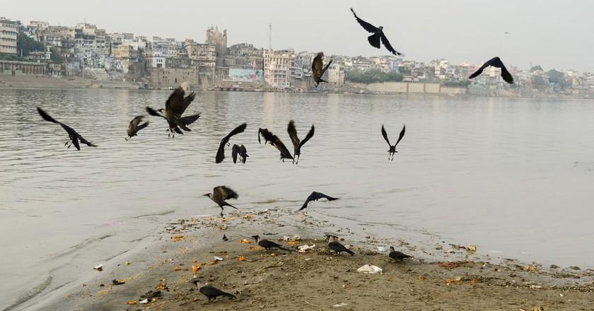 © Debsuddha Banerjee/ZUMA Wire/REX/Shutterstock