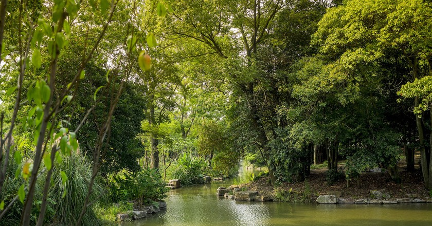 Shanghai Botanical Gardens    © Esin Üstün/Flickr