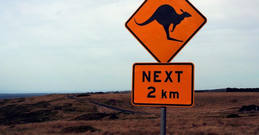 Australian Road Sign   © Moerschy/Pixabay