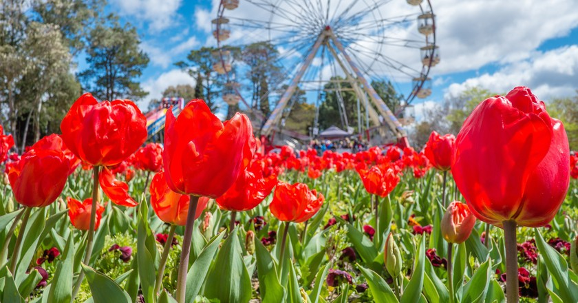The 12 Best Spring Destinations In Australia