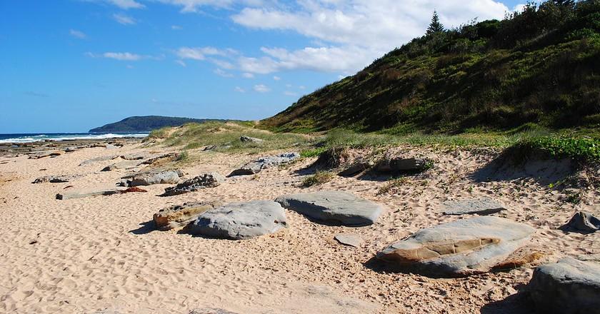 The Best Beaches on Australia's Central Coast