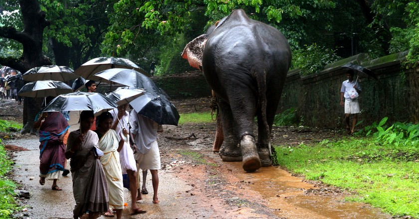 Kerala, God's Own Country