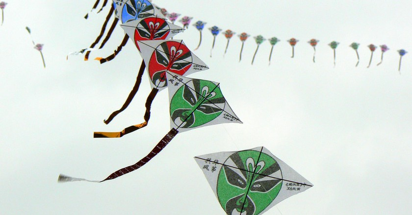 Masked kites | © Will Clayton / Flickr