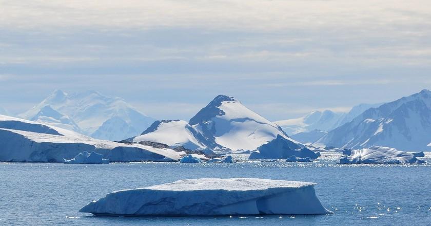 Webb Island, Antarctica   © Vincent van Zeijst / WikiCommons