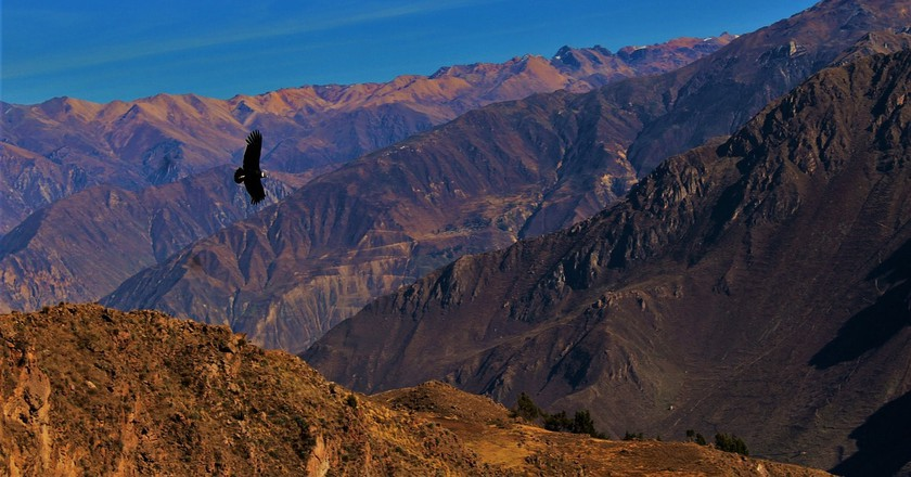 Colca Canyon in Arequipa, Peru |
