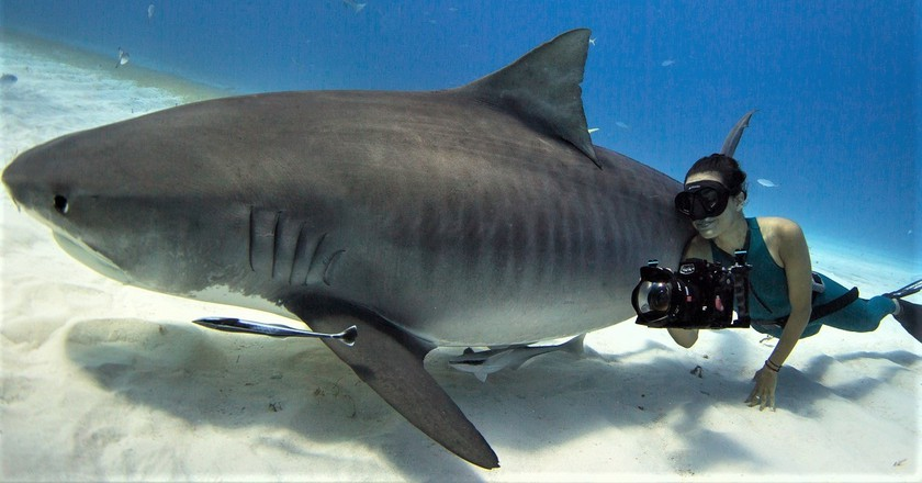 Meet 'Shark Girl', an Australian Filmmaker on a Mission to Save a Species