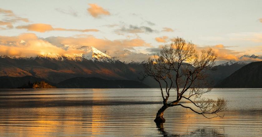 Winter sunrise in Lake Wanaka, New Zealand | © Hamish Clark/Unsplash