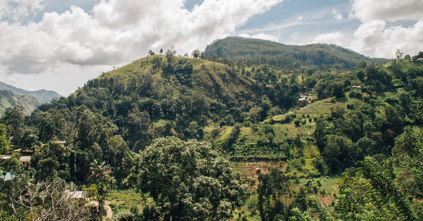 The Best Things to See and Do in Ella, Sri Lanka
