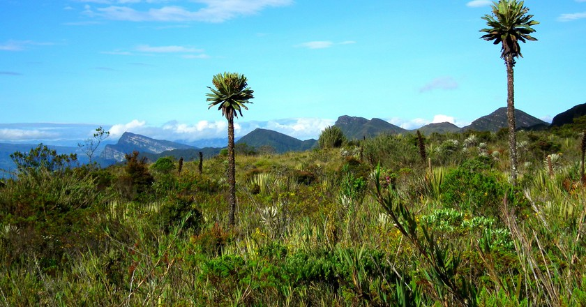 Chingaza National Park | © Chris Bell / The Culture Trip