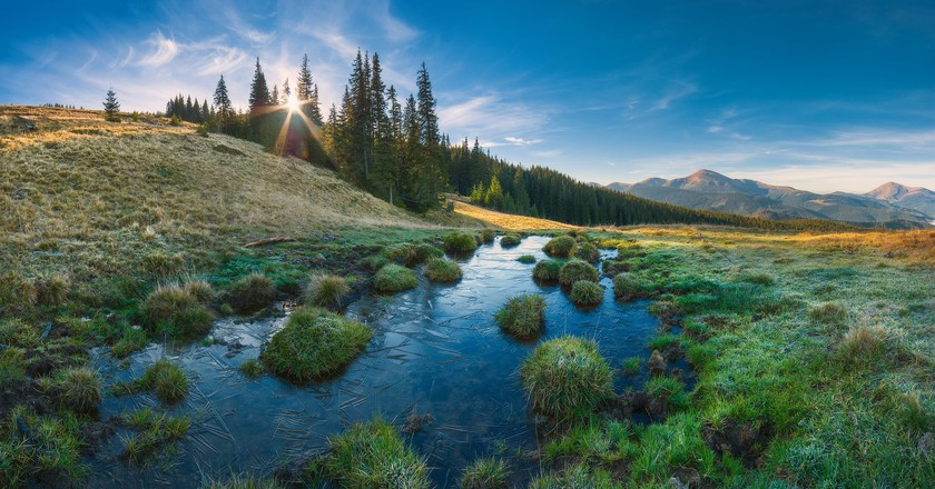 Carpathian Biosphere Reserve|©Vian/WikiCommons