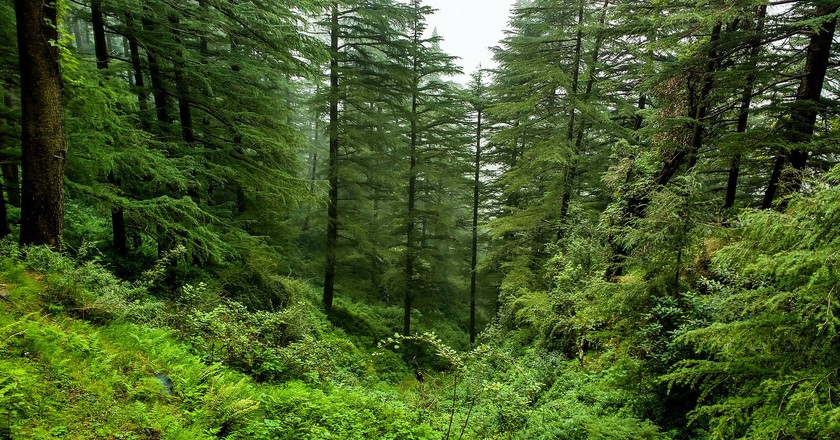 Himachal Pradesh, India | © Ashish Gupta / Flickr