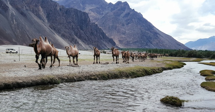 Nubra Valley | © Ashwin Kumar/Flickr