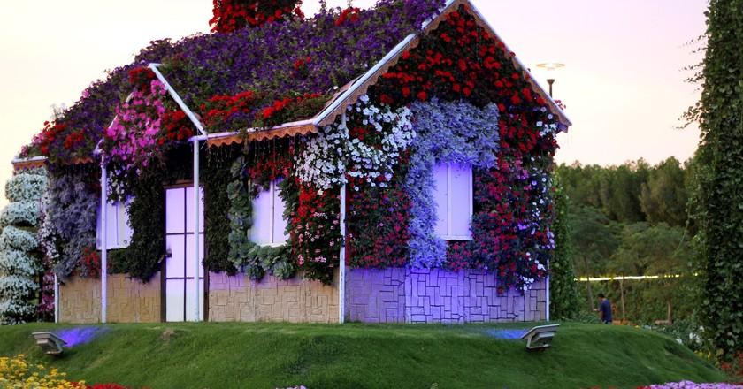 Dubai Miracle Garden | © wian/Pixabay