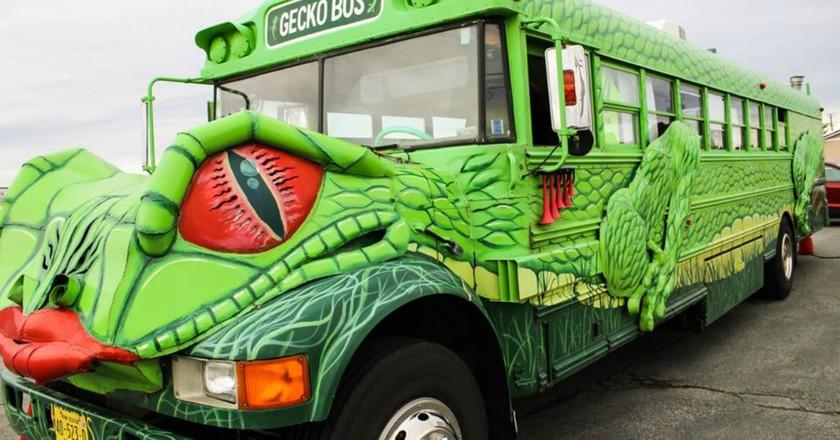 Gecko Bus   Courtesy of Gecko Bus