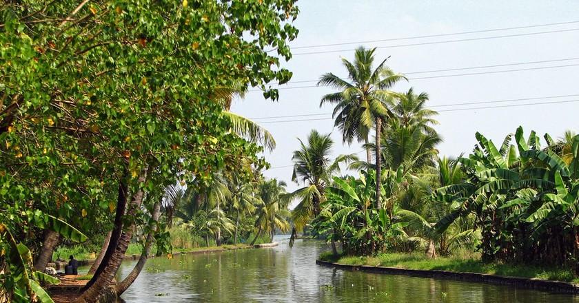The quiet backwaters of Kerala   © McKay Savage/Flickr