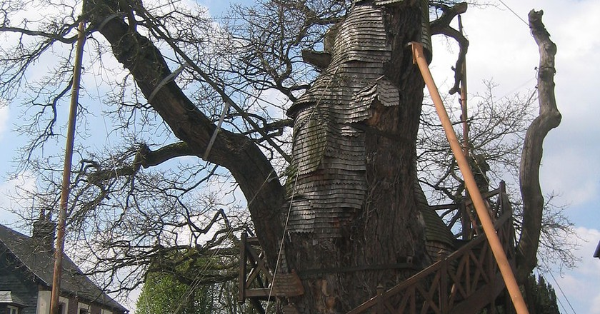 There's a Chapel Hidden Inside This Incredible Oak Tree