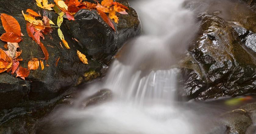 The Glen Artney area of Patapsco Valley State Park near Baltimore, Maryland |© Nicolas Raymond/Flickr