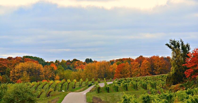 Michigan's scenic wine country