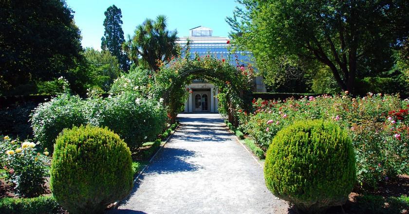 Christchurch Botanic Gardens | © Robert Young/Flickr
