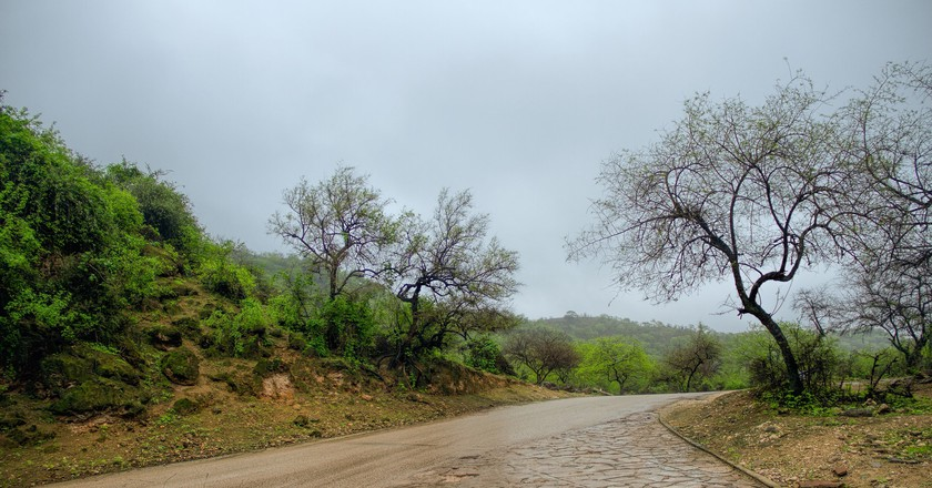 Khareef season, after the rain I © Ali Sabbagh / Flickr