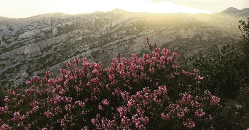 There are plenty of things to do in the Luberon in Spring | © Clement Griffet/Unsplash