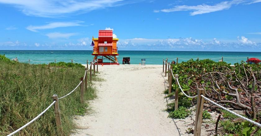 Perfect day in Miami Beach | Public Domain \ Pixabay