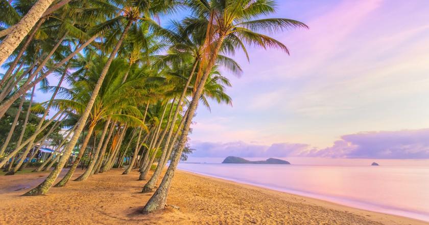 Palm Cove at sunrise  © Darren Tierney / Shutterstock