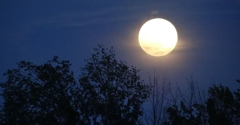 Full Moon   © Rachel Kramer/Flickr