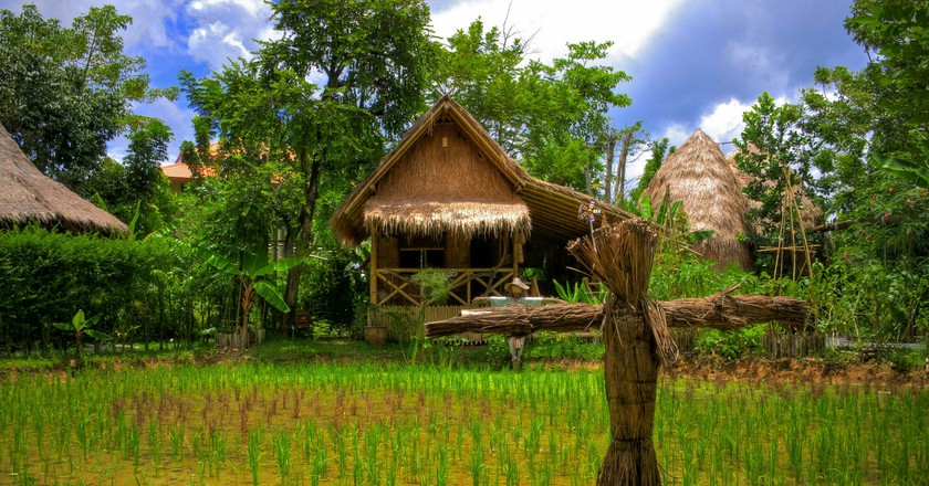 Verdant rice farm in Thailand | © Aziz J.Hayat / Flickr