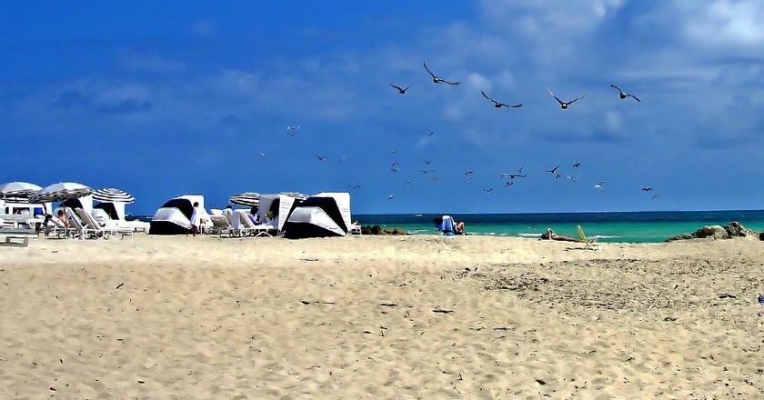 Miami   Public Domain \ Pixabay