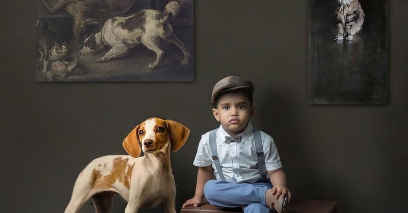 Pet dog   © himanshugunarathna / Pixabay