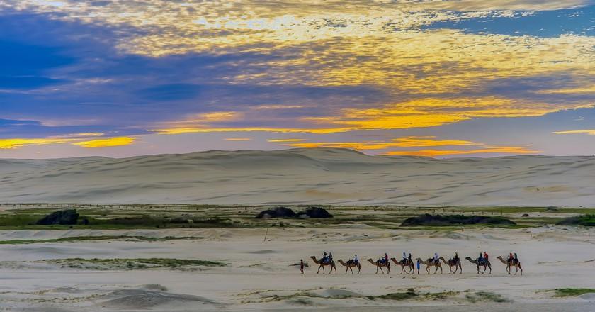 Egypt's sand dunes