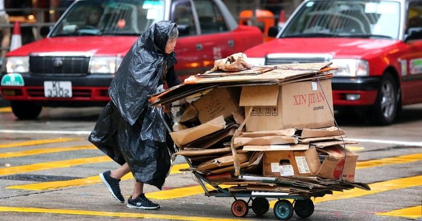 Hong Kong cardboard collectors