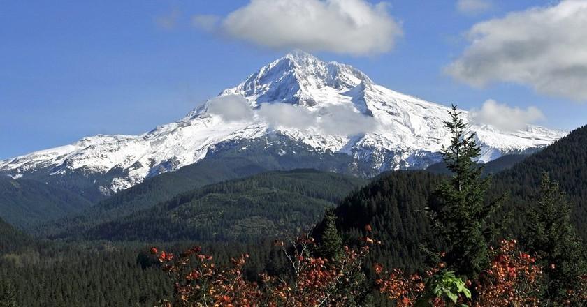 Mt. Hood in the summer