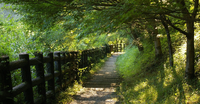7 Reasons to Hike the Kumano Kodo, an Ancient Pilgrimage Trail in Japan
