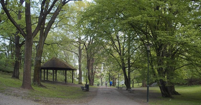 Tantolunden park is a premier picnic spot   © One Trick Pony / Flickr