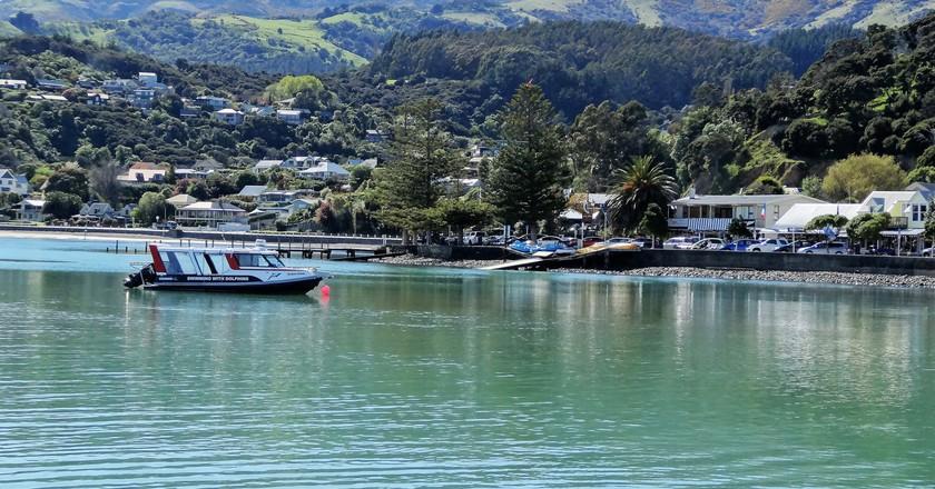 Harbour cruise boat arriving in Akaroa