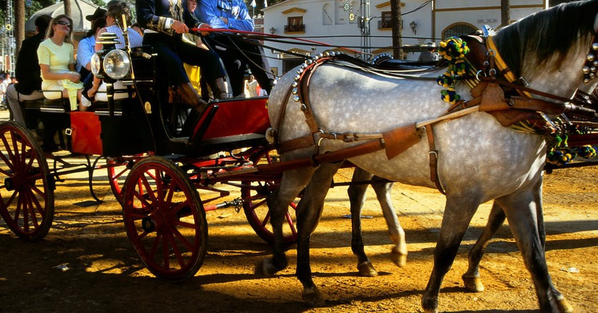 Jerez's Feria del Caballo is one of Andalusia's most charming fairs