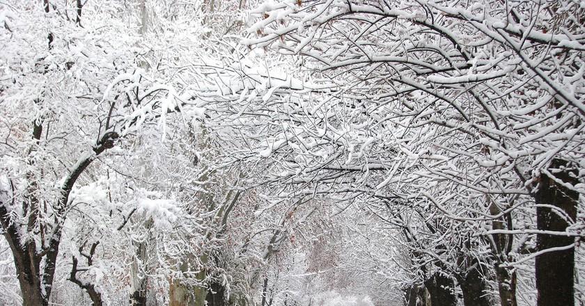 A snowy Chacras de Coria, Mendoza