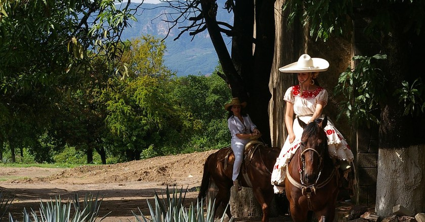Horseriding in Tequila