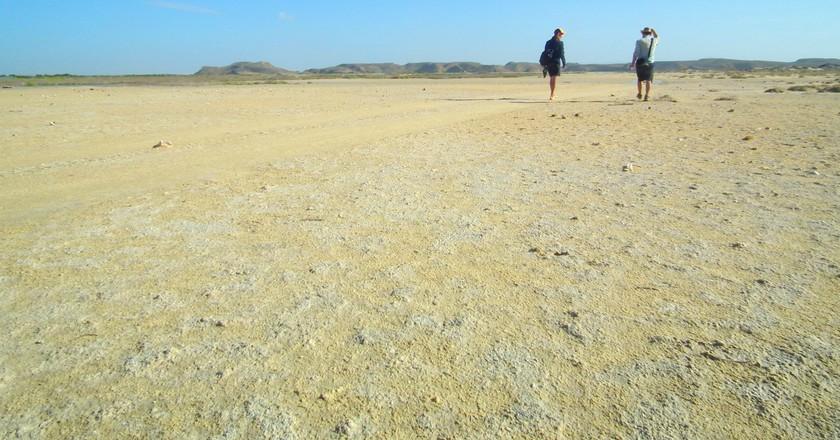 The Guajira Desert