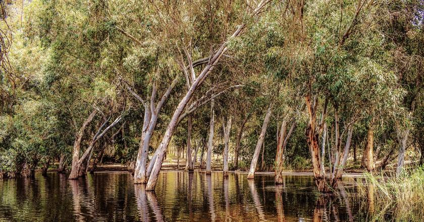 Enjoy fresh air and nature in Nicosia
