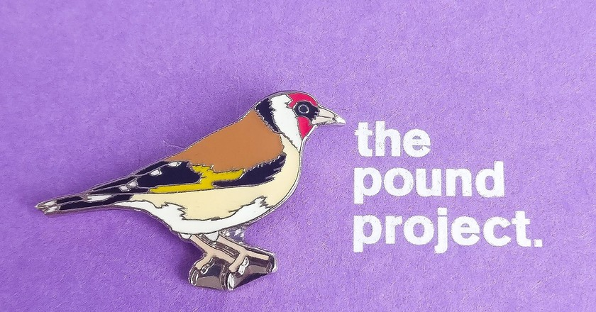 The Pound Project Logo